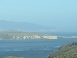 Sea cliffs near Point Reyes.