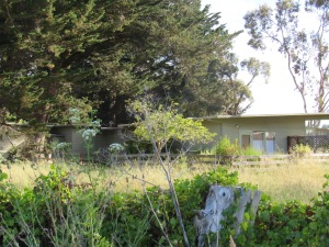 The house in Point Reyes Station.